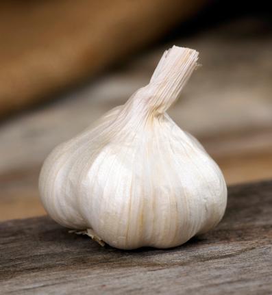 Garlic Clove「Garlic」:スマホ壁紙(18)