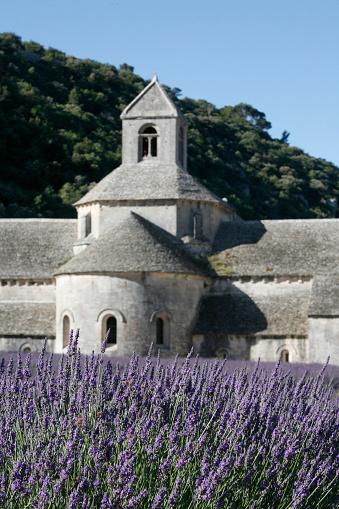 French Lavender「Lavender Field at Abbaye de Senaque」:スマホ壁紙(18)