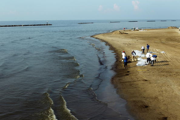 Environmental Cleanup「Oil From Spill Continues To Flow Into Gulf Of Mexico」:写真・画像(8)[壁紙.com]