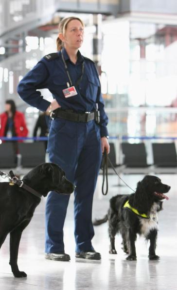 Terminal 5 Heathrow Airport「Heathrow Terminal Five - Official Opening」:写真・画像(8)[壁紙.com]