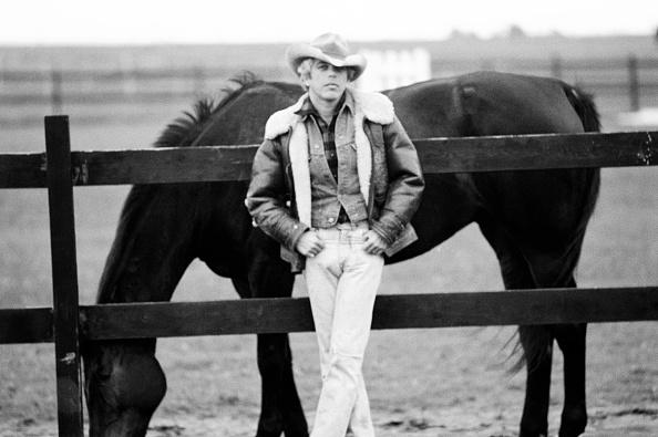 Horse「Ralph Lauren At Home」:写真・画像(0)[壁紙.com]