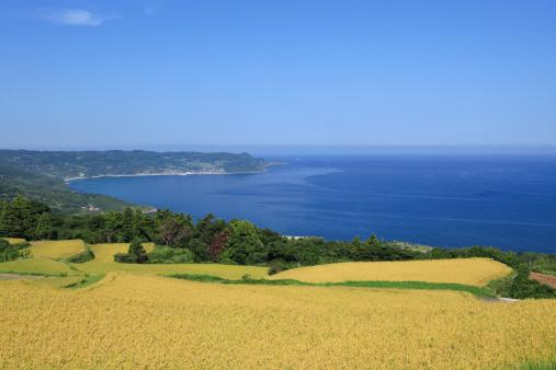 Sea「Higashi Ushirobata Terraced Field, Nagato, Yamaguchi, Japan」:スマホ壁紙(9)