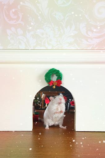 Fairy Tale「Mouse Hole at Christmas」:スマホ壁紙(9)