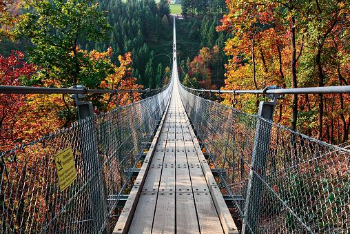 秋「懸濁液の歩道橋 Geierlay (Hangeseilbrucke Geierlay)、ドイツ」:スマホ壁紙(3)