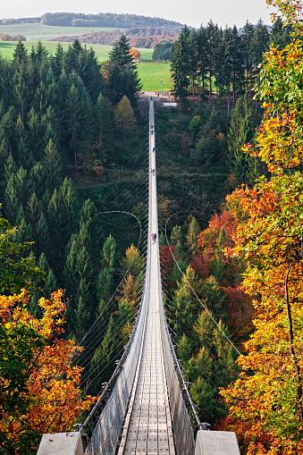 Leisure Activity「Suspension footbridge Geierlay (Hangeseilbrucke Geierlay) near Mosdorf, Germany」:スマホ壁紙(14)