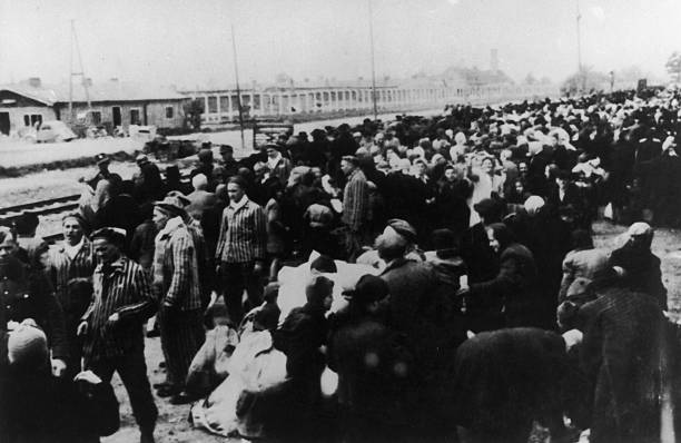 Deportees At Auschwitz:ニュース(壁紙.com)