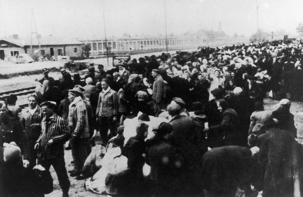 Transportation「Deportees At Auschwitz」:写真・画像(7)[壁紙.com]