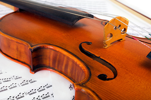 Violin「Cut image of a violin placed on musical notes」:スマホ壁紙(13)