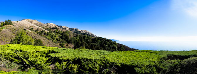 Big Sur「Panorama of coast near Big Sur」:スマホ壁紙(5)