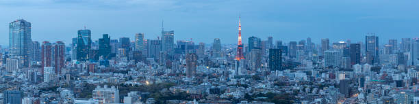 Panorama of the skyscrapers of central Tokyo and the iconic Tokyo tower, Japan's capital city.:スマホ壁紙(壁紙.com)