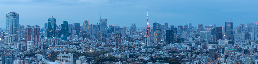Tokyo - Japan「Panorama of the skyscrapers of central Tokyo and the iconic Tokyo tower, Japan's capital city.」:スマホ壁紙(16)