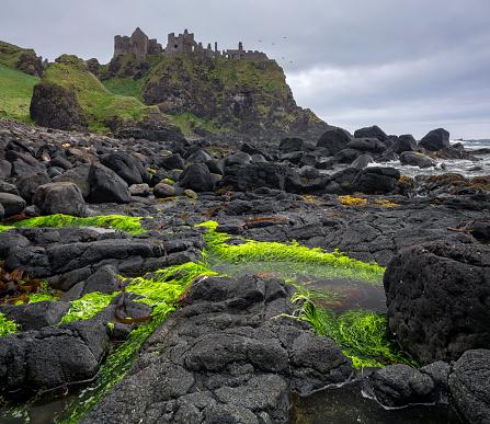 アイリッシュ海「Dunluce castle on edge of cliff, Ireland」:スマホ壁紙(19)