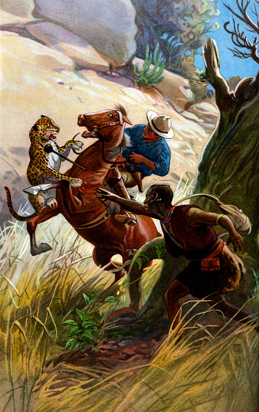 African Cheetah「Cheetah and African tribesman attack horse and rider」:写真・画像(2)[壁紙.com]
