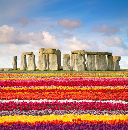 UNESCO World Heritage Site「Tulips by famous place: Stonehenge」:スマホ壁紙(8)