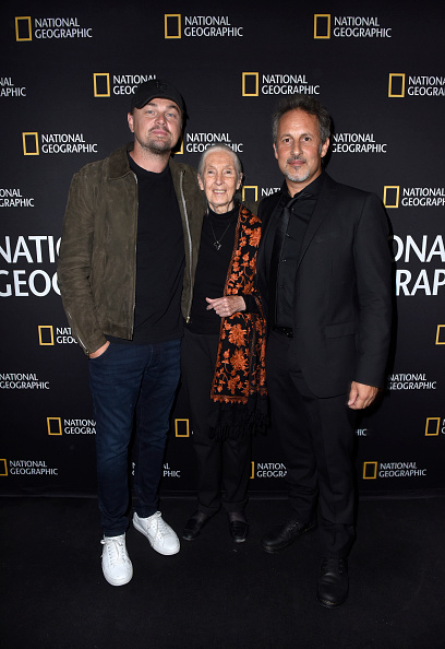 "Shadow「National Geographic Documentary Films' ""SEA OF SHADOWS"" Los Angeles Premiere」:写真・画像(9)[壁紙.com]"