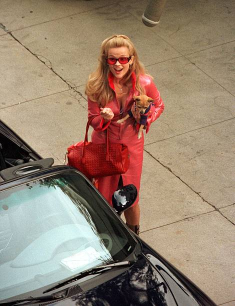 Reese Witherspoon in Legally Blonde:ニュース(壁紙.com)