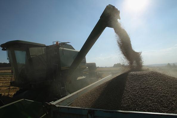 Barley「Farmers Conclude Grain Harvest」:写真・画像(7)[壁紙.com]