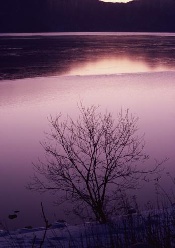 Nikko City「Lake」:スマホ壁紙(9)