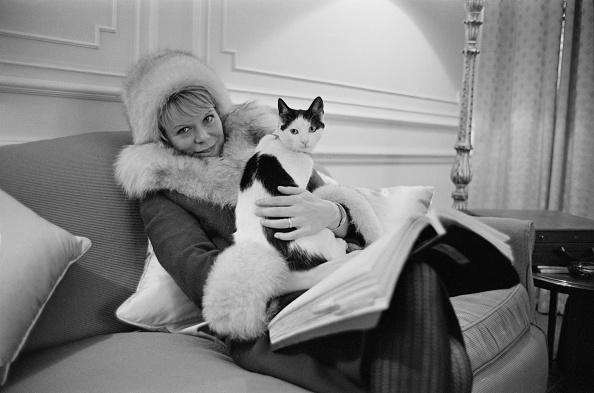 Victor Blackman「Rachel Roberts with cat Isabella」:写真・画像(5)[壁紙.com]