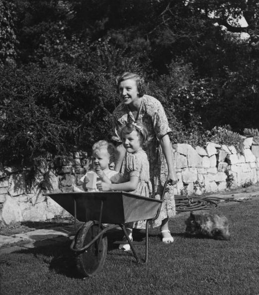 Toddler「Wheelbarrow Ride」:写真・画像(17)[壁紙.com]
