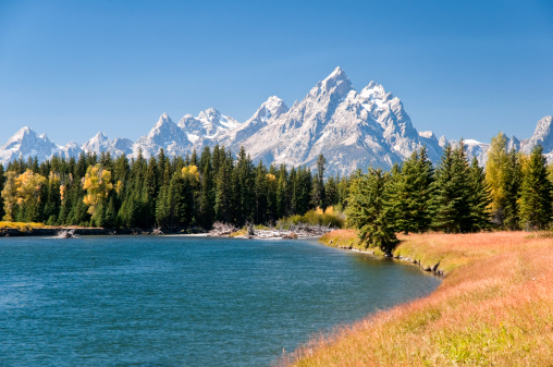 Aspen Tree「Grand Tetons Mountians and The Snake River」:スマホ壁紙(1)