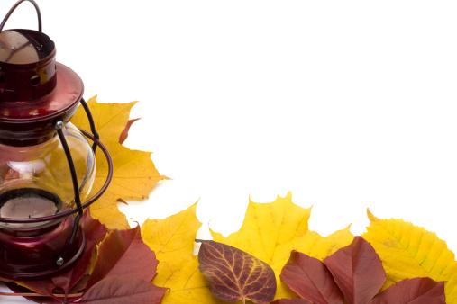 セイヨウカジカエデ「Lamp and leafs over white」:スマホ壁紙(5)