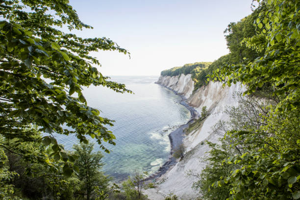 Germany, Mecklenburg-Western Pomerania, Ruegen, Jasmund National Park, chalk cliff:スマホ壁紙(壁紙.com)