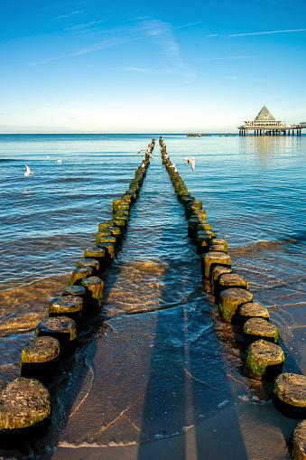 Seagull「Germany, Mecklenburg-Western Pomerania, Heringsdorf Pier, breakwater」:スマホ壁紙(5)