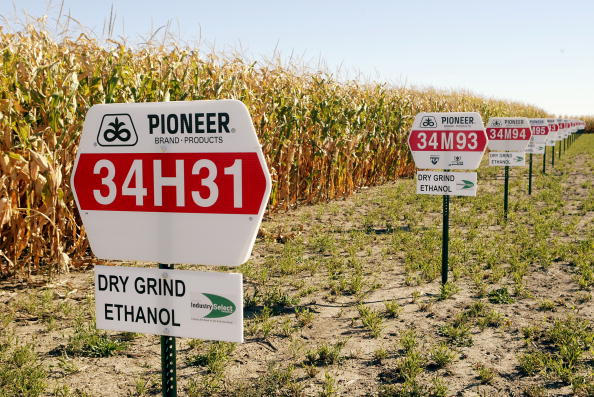 Ethanol「Illinois Plant Produces Alternate Fuel」:写真・画像(8)[壁紙.com]