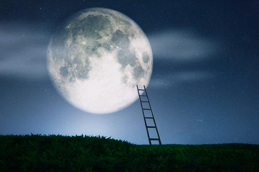 Reaching「Ladder to the Moon」:スマホ壁紙(19)