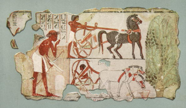 Ancient Civilization「Egyptian Charioteers」:写真・画像(15)[壁紙.com]