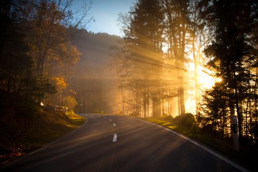 Atmospheric Mood「Sunlight Beams Cutting Through Mountain Road, Switzerland」:スマホ壁紙(9)