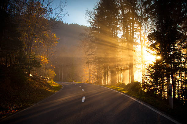 Sunlight Beams Cutting Through Mountain Road, Switzerland:スマホ壁紙(壁紙.com)