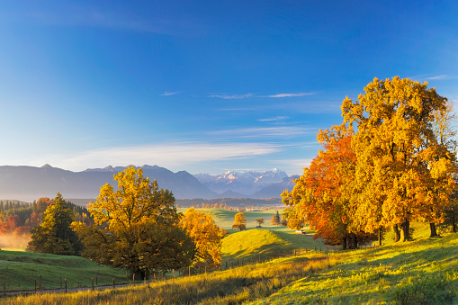 Hill「Foothpath at Indian Summer with Zugspitze in Background - XXL Panorama」:スマホ壁紙(3)