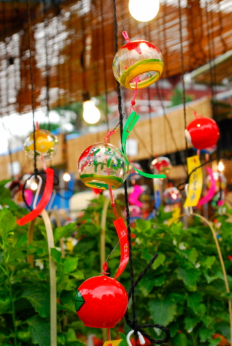 Chinese Lantern「Wind chimes and potted winter cherries, Tokyo prefecture, Japan」:スマホ壁紙(17)