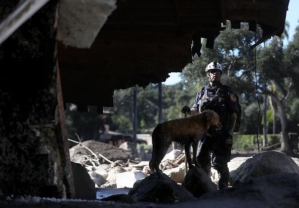 カリフォルニア州「Mudslides Kill At Least 17 People In Santa Barbara County Where Wildfire Scorched Hillside」:写真・画像(5)[壁紙.com]