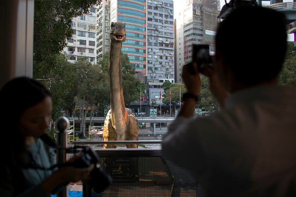 Vertebrate「Robotic Dinosaurs Installed Ahead Of 'Legends Of The Giant Dinosaurs' Exhibition Opening」:写真・画像(18)[壁紙.com]