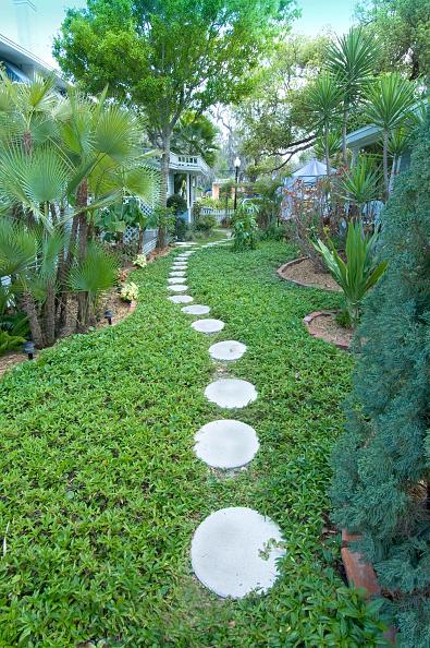 Footpath「Dunedin, Florida. Garden pathway at the Meranova Guest Inn. USA」:写真・画像(6)[壁紙.com]