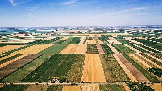 春「農業と環境保全のための生物多様性」:スマホ壁紙(5)