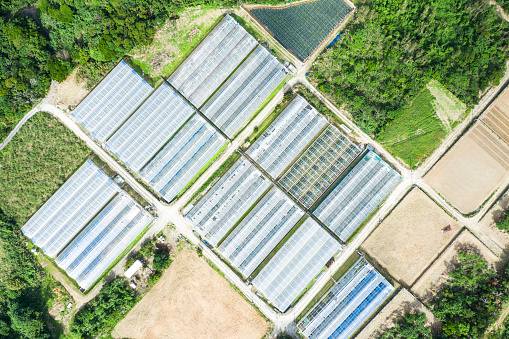 Satoyama - Scenery「Agriculture in Japan. Aerial shooting of greenhouse.」:スマホ壁紙(1)