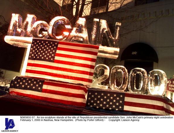 Ice Sculpture「John McCain's ice sculpture」:写真・画像(8)[壁紙.com]