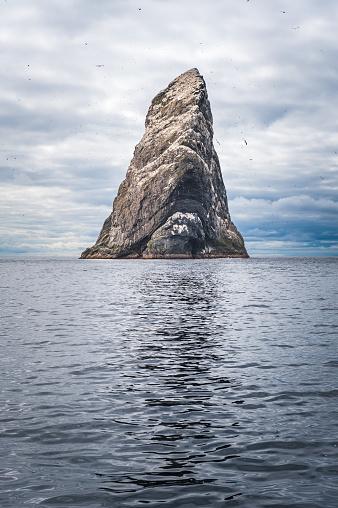Hirta「Sea stack bird colony rising from ocean St Kilda Scotland」:スマホ壁紙(7)
