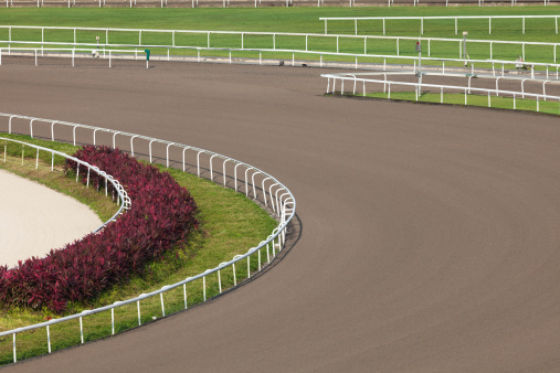 Flat Racing「All Weather Track in Racecourse」:スマホ壁紙(12)