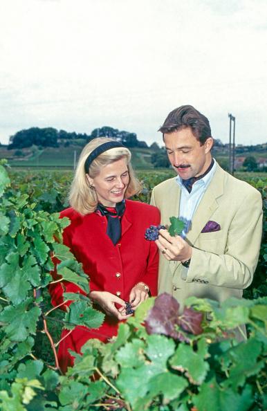 Nouvelle-Aquitaine「Von Neipperg」:写真・画像(5)[壁紙.com]