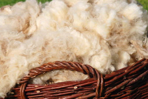 Wool「raw sheep wool」:スマホ壁紙(16)