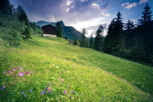 Eco Tourism「spring meadow with dramatic sky near steeg- tirol austria」:スマホ壁紙(4)
