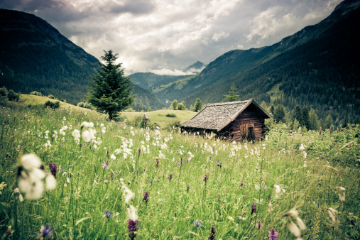 Thunderstorm「spring meadow with dramatic sky n- tirol, austria- vintage filtered」:スマホ壁紙(10)