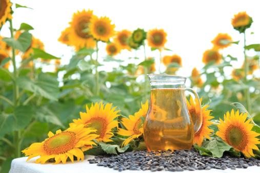 ひまわり「オイルのボトル 1 本 sunflowers」:スマホ壁紙(1)