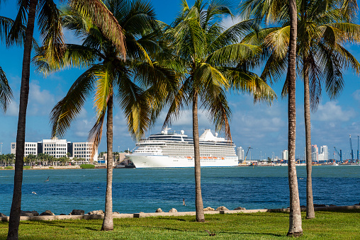 Miami「Cruise ship at Miami Harbor」:スマホ壁紙(7)