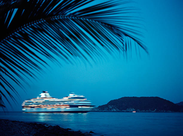 Cruise ship pulling into bay at night:スマホ壁紙(壁紙.com)